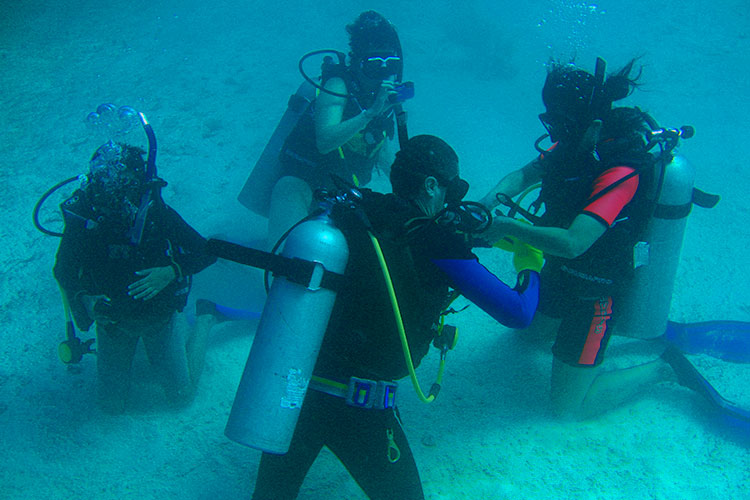 Skin Diver buceo
